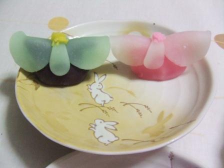 お雛様の上生菓子。かわいい^^