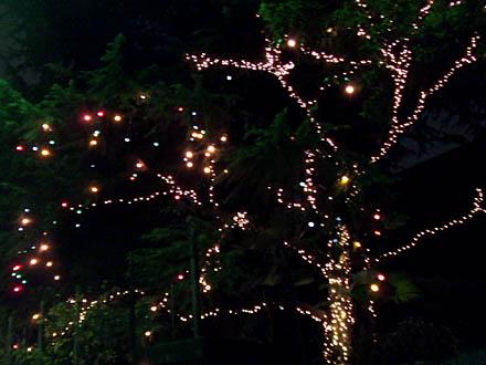 京都大丸クリスマス