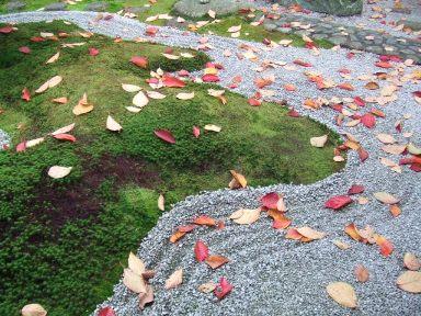重森三玲邸庭園の茶室と曲線の庭