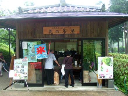 三室戸寺の花の茶屋