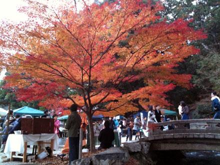 京都上賀茂神社の手作り市と真っ赤な紅葉