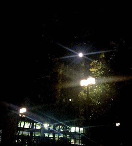 華正楼の月餅